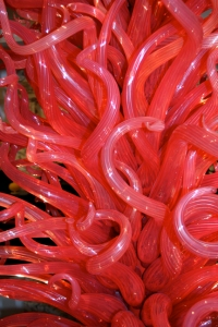 The Flame of Liberty by Dale Chihuly
