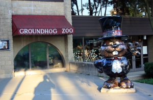 Punxsutawney Phil in the Groundhog Zoo