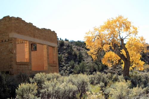 Sego_Canyon_Store-s
