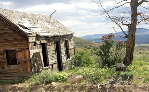 Miner's shack in Mammoth Utah