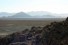 Soda Lake playa