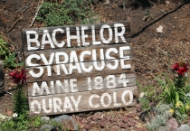 sign for bachelor mine