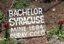 sign for bachelor mine