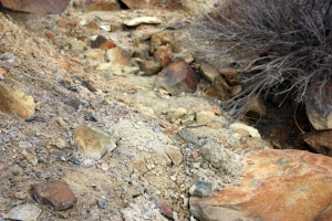 Soil discoloration in the wash west of the main Swansea mine dump at Silver City.