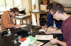 Chemistry students drawing illustrations with their own homemade ink