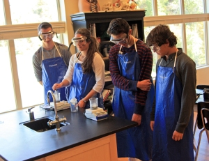 Chemistry students making ink