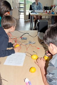 Lemon batteries demonstrated at our Science Showcase; April, 2014