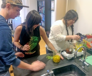 Students prepare a dye bath of sunflower petals.