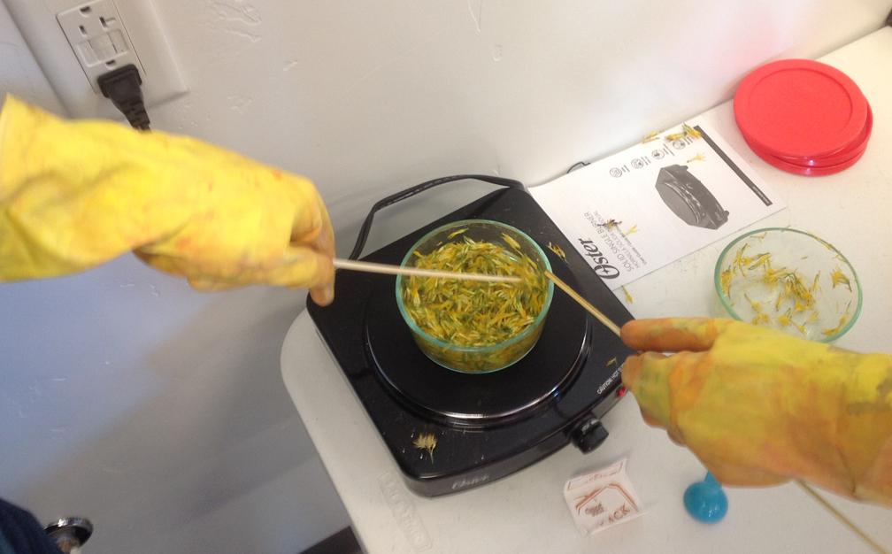 cooking-rabbitbrush