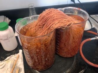 Sandalwood process
