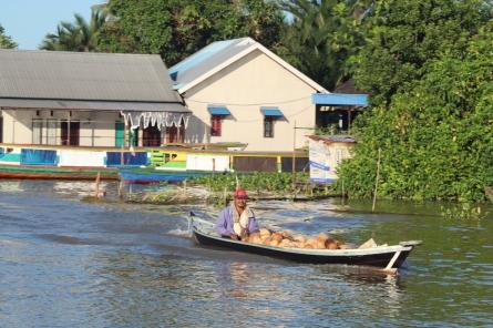 Coconuts in boat