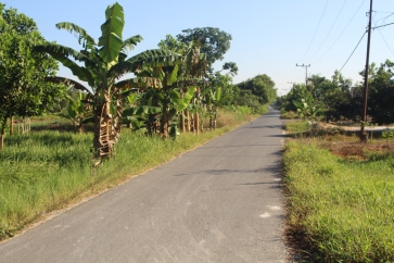 Country lane near school