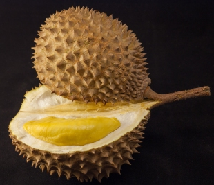 Durian_in_black