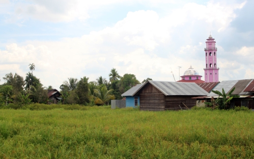 Rice field and pink mosque 2