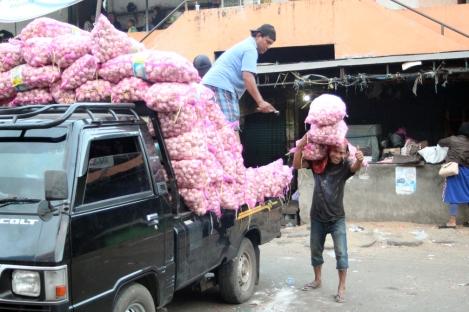 Unloading garlic