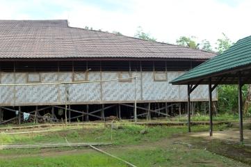 Dayak longhouse 2
