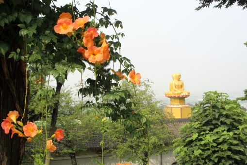 Flowers and double Buddha