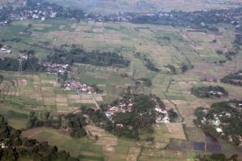 Rice fields approaching Jakarta