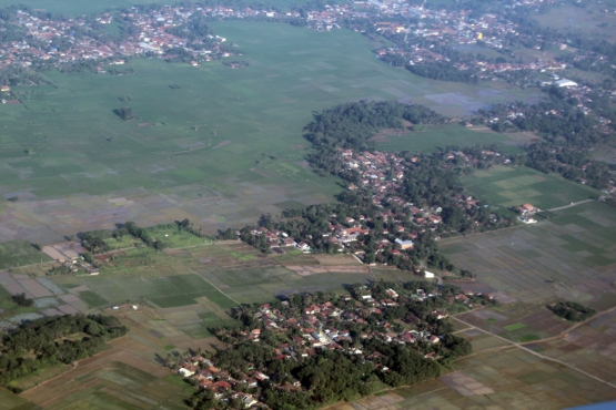 Towns and rice from air