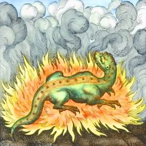 Fire salamander emblem
